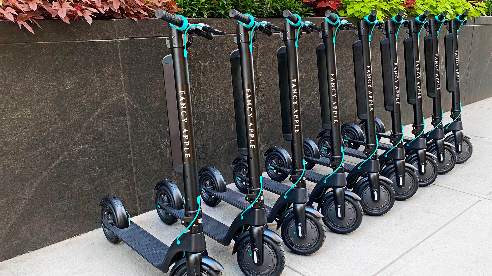 Electric Scooter Rentals In Nyc Fancy Apple New York